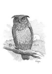 original a4 owl pencil drawing 8x12