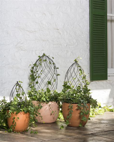 topiary frame sphere topiary frame topiary forms wire topiary