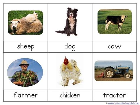 montessori printables animals montessori nomenclature farm life1 craft ideas