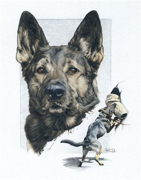 how to a k9 german shepherd k9 drawing greeting card