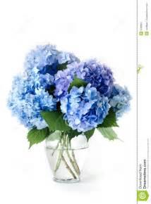 White And Purple Wedding Flowers - blue hydrangeas stock image image 9796661
