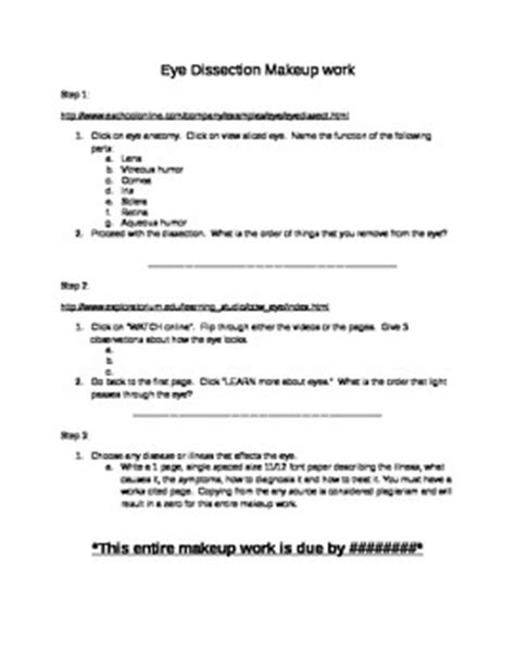 Cow Eye Dissection Worksheet Answers by Eye Dissection Companion Worksheet By Minton Mart Tpt