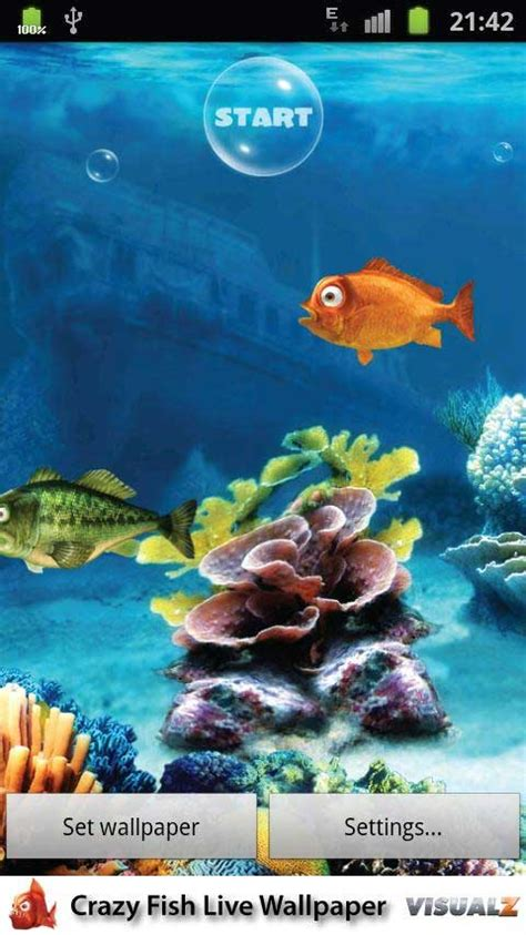 game live wallpaper apk crazy fish live wallpaper 1 0 apk android game free