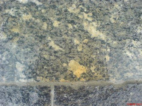 Rostflecken Auf Granit Entfernen by Granit Gneis Quarzit