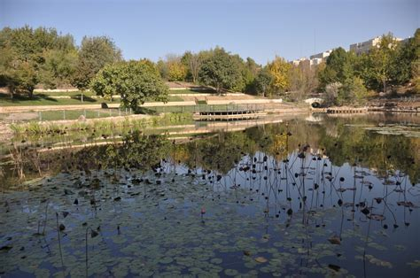 Biodiversity At Jerusalem Botanical Gardens Israel Tours Jerusalem Botanical Gardens