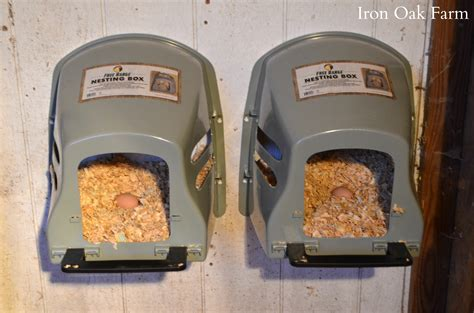 Home Design Floor Plans Free 7 Criteria For A Good Nesting Box Community Chickens