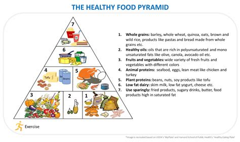 healthy fats usda the new food pyramid pictures