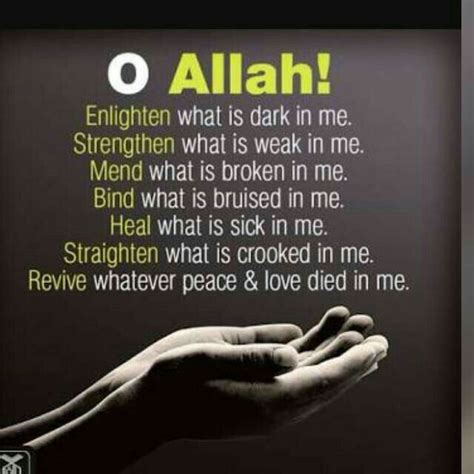 what is a muslim me 384 best images about ya allahh on forgive