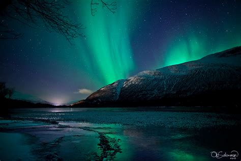 when are the northern lights in norway the tripatorium the northern lights of norway