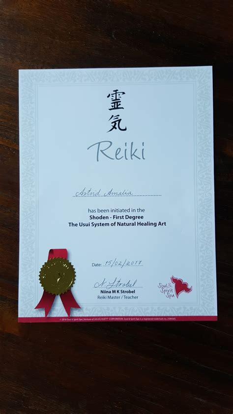 Reiki 21 Day Detox by Astrid Amalia My Journey At Reiki 1 Course From Usui System