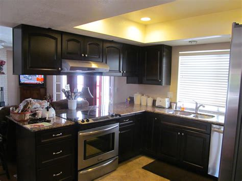Black Kitchens And Kitchen Cabinets On Pinterest Idolza Cheap Black Kitchen Cabinets