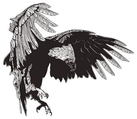 philippine eagle tattoo designs philippine eagle philippines
