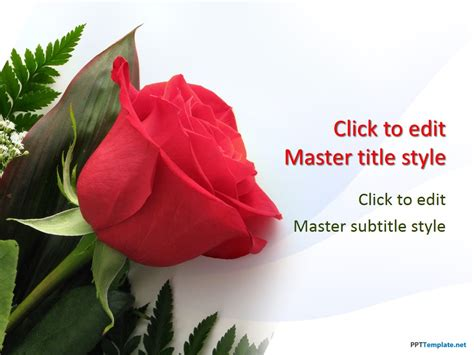 free romantic templates for your powerpoint free rose flowers ppt template