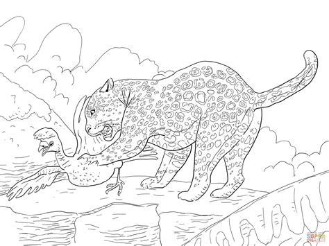 realistic jaguar coloring pages jaguar step by step coloring pages