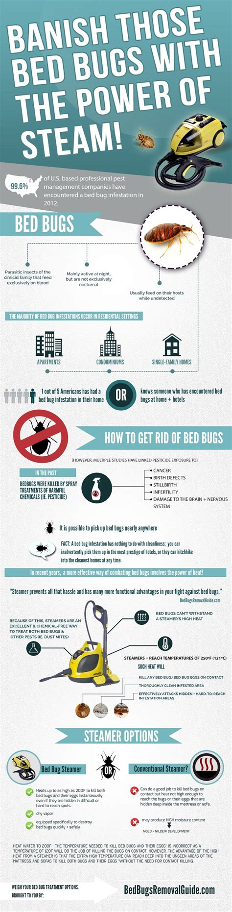 getting high off bed bugs how to choose a good bed bug steamer kill bed bugs with heat