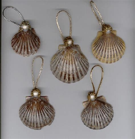 how to make seashell christmas ornaments holidappy