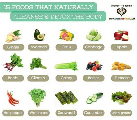 Top Choices Detox Cleanse by 15 Foods That Naturally Cleanse Detox The Cleanse