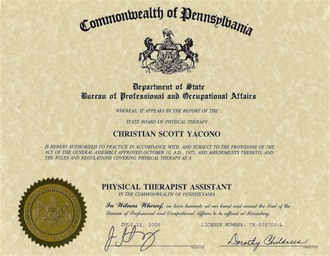 Cna Resume Sample With No Experience by Christian Yacono Curriculum Vitae