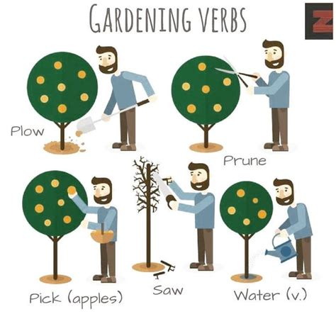 Gardening Verbs 158 Best Verbs Images On Learn