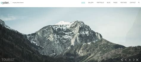 drupal themes for photographers 11 drupal themes for photography portfolio websites