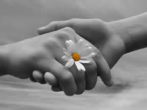 fiore perdono 301 moved permanently