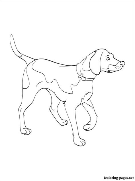 i love my dog coloring pages by breed dog breeds picture