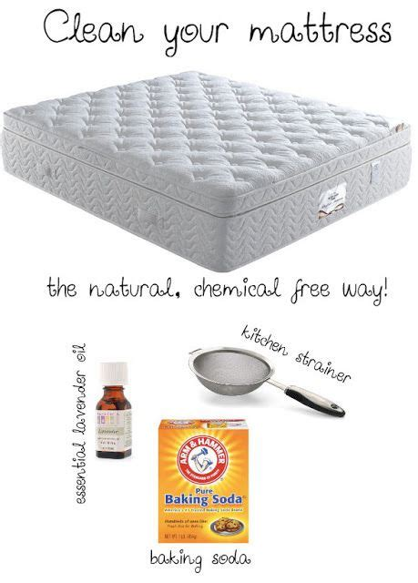 how to clean bed bugs 25 best ideas about bed bugs on pinterest bed bugs