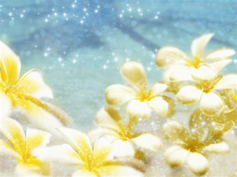 wedding flower images free free wedding flower backgrounds and wallpapers