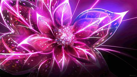 cool flower wallpapers wallpaper cave