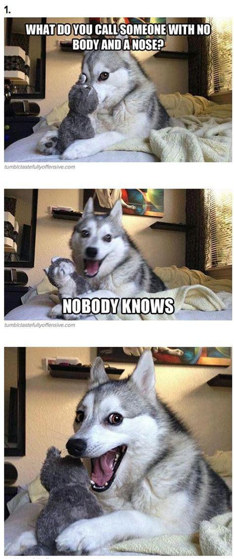 Bad Dog Meme - 48 best nicholas s favorite funny dog puns images on