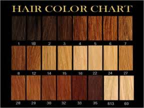 hair extension color chart hair extensions available hair extensions
