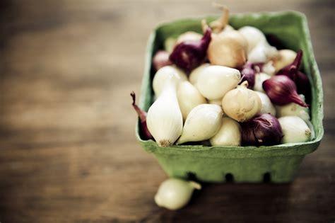 come cucinare cipolle come cucinare le cipolle borretane le ricette de la