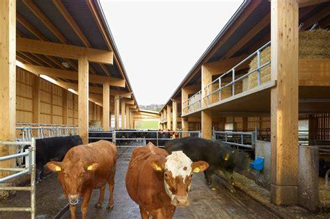 cowshed wildenstein domus