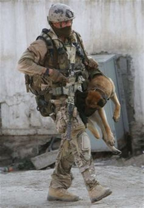 dog on boat to europe 1000 ideas about special forces on pinterest rifles