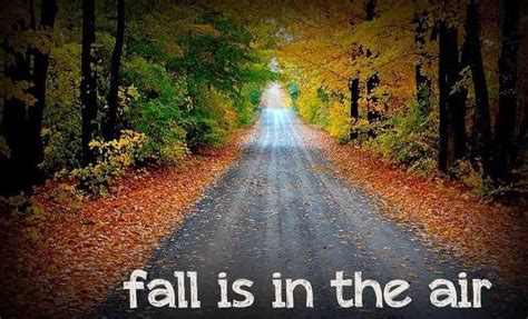 Fall is in the air autumn fall thanksgiving pinterest