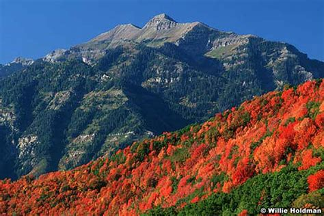 Marvelous Christmas Mountain In Wisconsin #5: Wasatchmountains-wh-cascademnt-630x420.jpg
