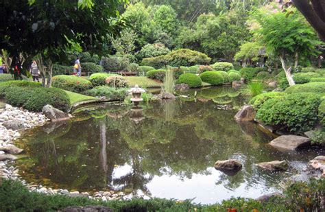 Mt Cootha Botanic Gardens Mt Cootha Botanic Gardens About Queensland Mt Coot Tha Botanical Gardens Parks Alive Roma