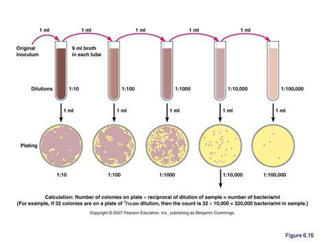 Alat Laboratorium Umum Petri Dish direct methods of measuring microbial growth