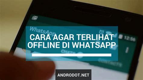 terlihat offline  whatsapp wa padahal