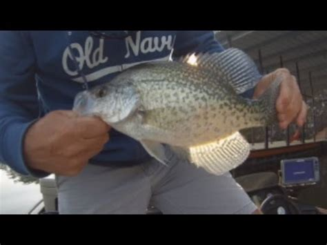 crappie fishing april  arkansas crappie fishing