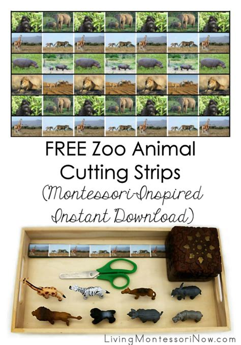 printable montessori cutting strips free zoo animal cutting strips montessori inspired