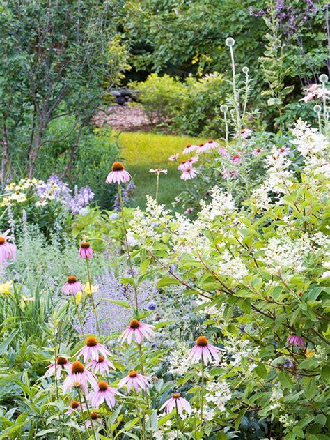 backyard wildlife habitat create a backyard wildlife habitat