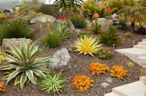 succulent front yard design 52 succulent garden designs garden designs design trends