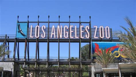 los angeles zoo los angeles county zoo and botanical garden griffith park day trip things to do