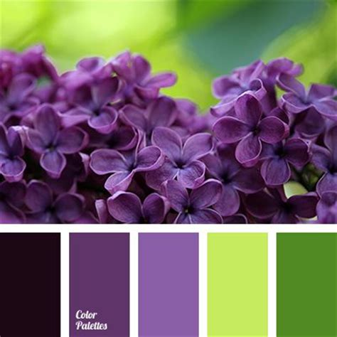 green and purple l shade best 20 purple color combinations ideas on pinterest