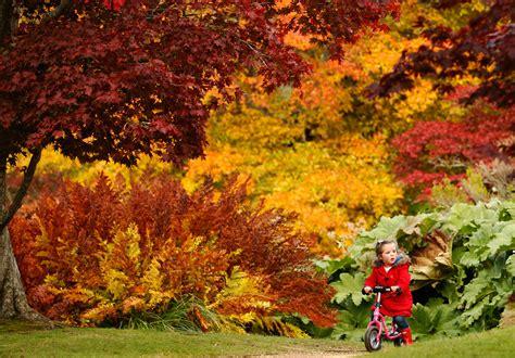 amazing color for the fall landscape landscaping ideas những bức ảnh tuyệt đẹp về m 249 a thu tr 234 n thế giới phần 2