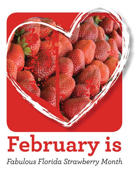 Strawberry Chocolate This Month by Strawberry Celebrate February As Fabulous Florida