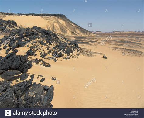 volcanic sand shiny black volcanic rock strewn the sand in the