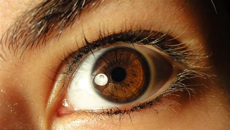 how many colors can the human eye distinguish 30 exles of up eye photography stockvault net