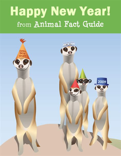 what new year animal was 2008 happy new year from animal fact guide animal fact guide